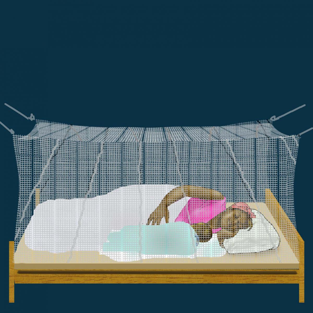 Malaria - Mother sleeping with infant under mosquito net - 02 - Unknown