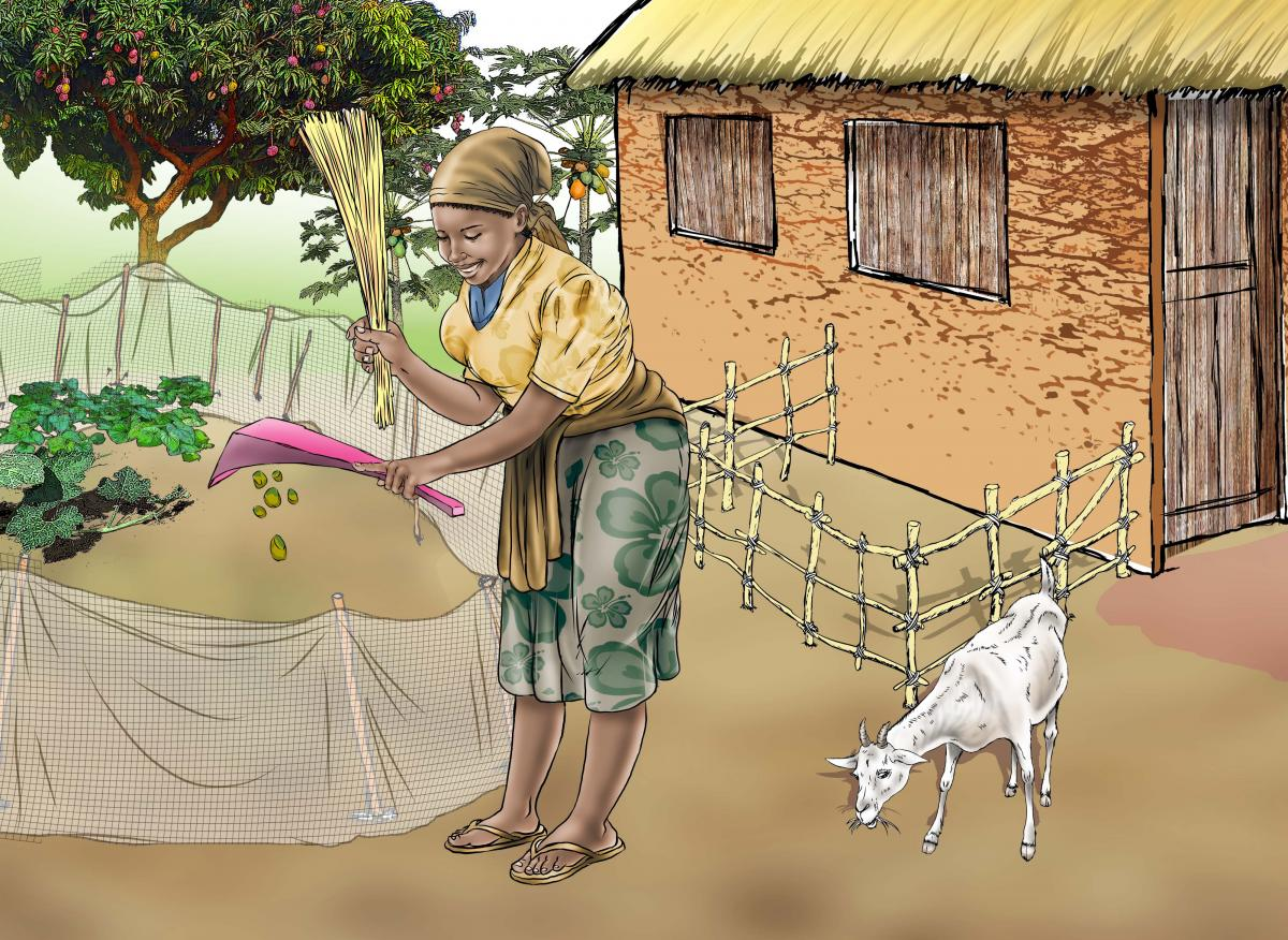Sanitation - Cleaning up animal feces - 05 - Sierra Leone