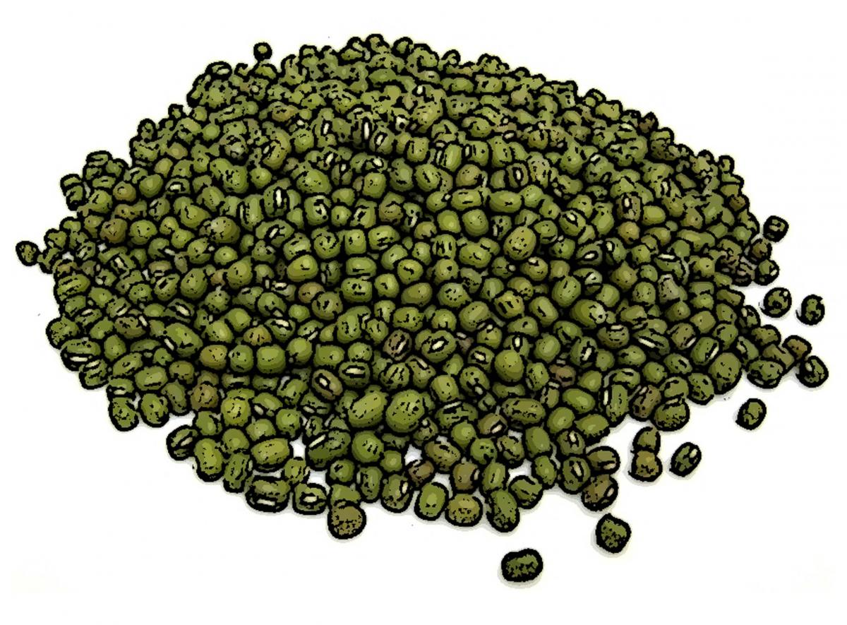 Food - Peas - 00B - Non-country specific