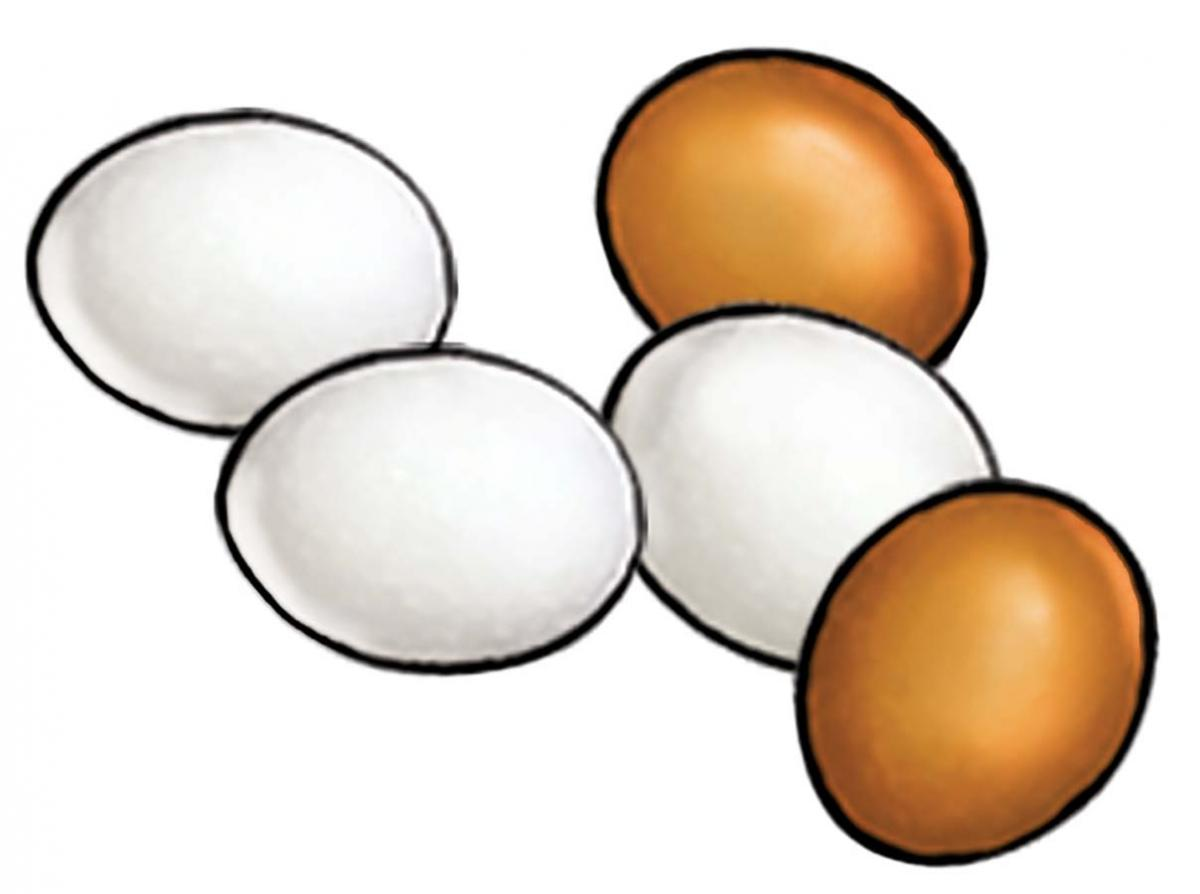 Food - Eggs - 00D - Non-country specific