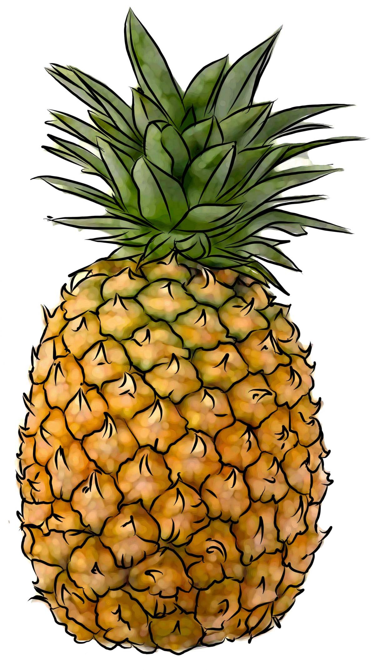 Food - Pineapple - 00M - Non-country specific