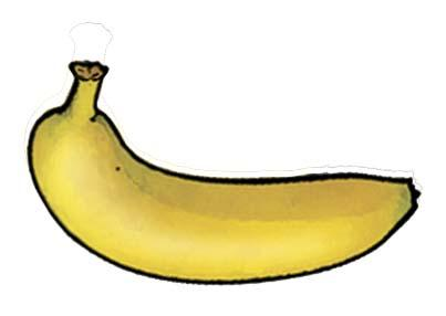 Food - Banana - 00N - Non-country specific
