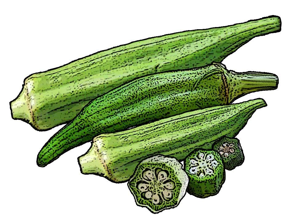 Food - Okra - 00E - Non-country specific