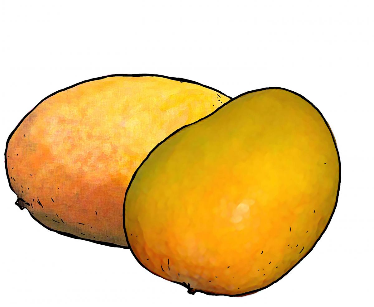 Food - Mangos - 00J - Non-country specific