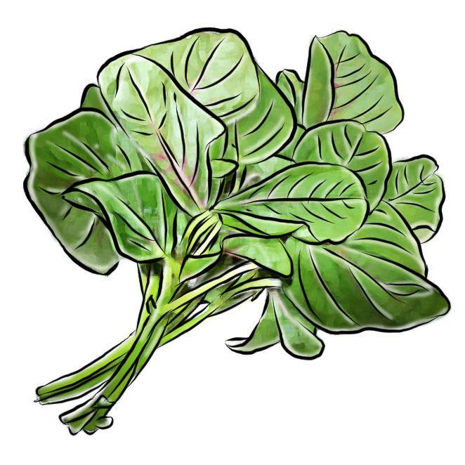 Food - Spinach - 01 - Rwanda