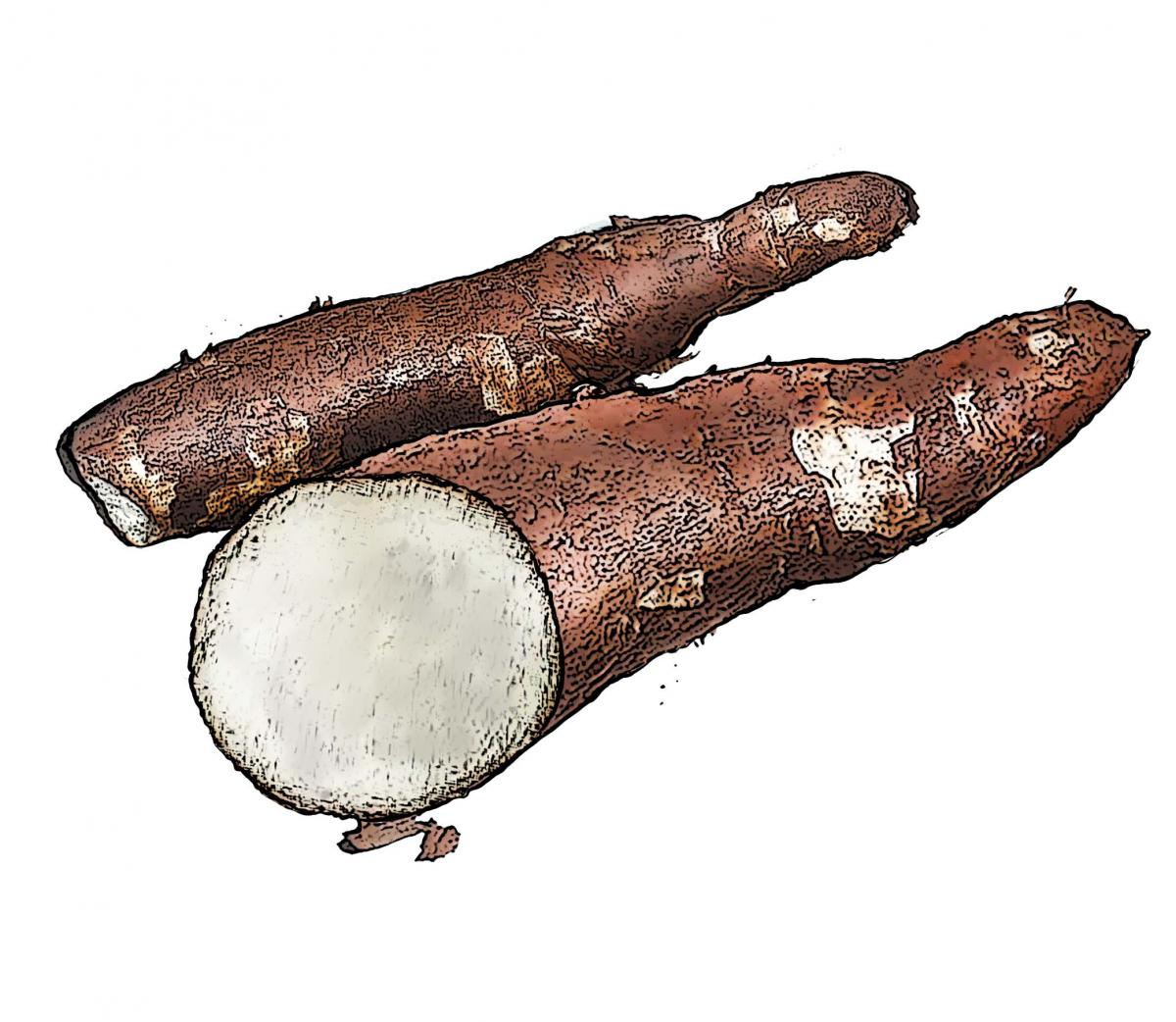 Food - Cassava - 00B - Non-country specific