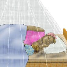 Malaria - Mother breastfeeding under mosquito net 6-9 mo - 03 - Unknown
