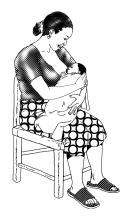 Breastfeeding - Exclusive breastfeeding - sitting - 01 - Non-country specific