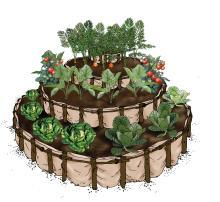 Horticulture - Kitchen garden - 01A - Rwanda