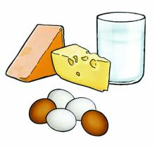 Food - Dairy Only - 00G - Non-country specific