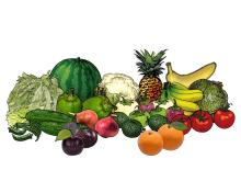 Food - Vegetables and Fruits - 00R - Non-country specific