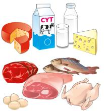 Food - Animal-Source Foods  - 00B - Kyrgyz Republic