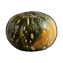 Food - Pumpkins - 00G - Non-country specific