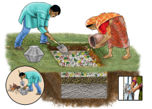 Agriculture - Pit Composting - 05 - India