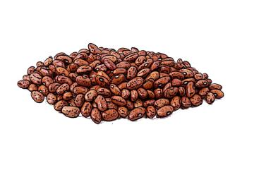 Food - Kidney Beans - 00E - Non-country specific