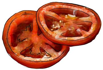 Food - Tomatoes - 00G - Non-country specific