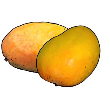 Food - Sweet Potato - 00J - Non-country specific