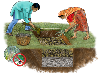 Agriculture - Pit Composting - 04 - India