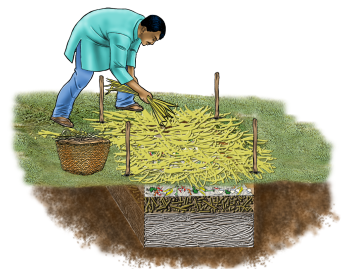 Agriculture - Pit Composting - 07 - India