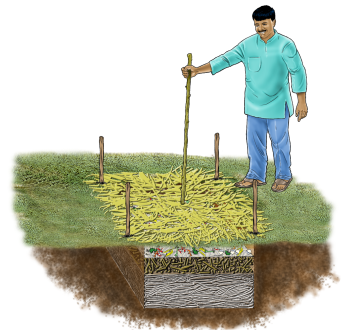 Agriculture - Pit Composting - 08 - India